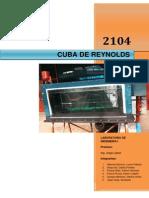Informe 1 - Cuba de Reynolds