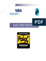 Presentacion Palex Prodinsa English 2011