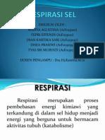 139965651-Respirasi-Sel.ppt