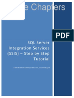 SQL Server Integration Services Ssis Step by Step Sample Chapters