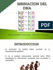 RECOMBINACION GENETICA