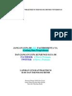 Laporan Lengkap Praktikum Teknologi Benih Universitas Tadulako