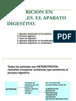 Sistema Digestivo Animal