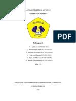 Laporan Praktikum Anfisman Panca Indra