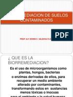 Biorremediación 1 Ppt 2014 Ecvf