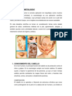 Qué Es La Cosmetología