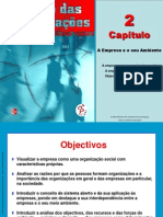 Gestao Das Organizacoes CAP 2