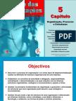 Gestao Das Organizacoes CAP 5