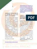 Boletin Infor-nº7