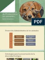 Proteccion y Regulacion Administrativa