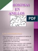 Presentación1anillos