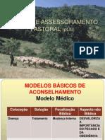 Cuidado e Assessoramento Pastoral