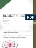 EL METABOLISMO.pptx