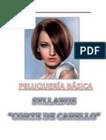 Syllabus Corte de Cabello