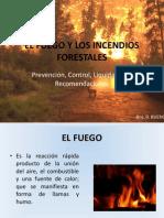 El Fuego y Los Incendios Forestales