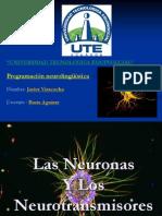 Neuron as y Neuro Transm i Sores