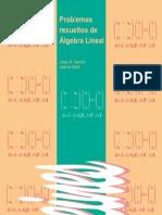 Problemas Resueltos de Álgebra Lineal - García