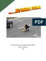 I.E. Federico Sierra Arango Proyecto de Aula