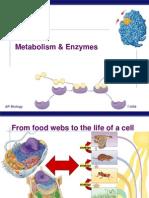 21387033-AP-Bio-Enzymes-Ppt (2)