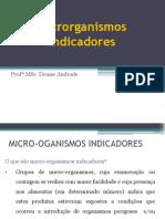 Aula 4_microrganismos Indicadores