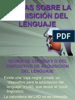 adquisicionytrastornosdellenguaje-120211001657-phpapp01