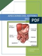 Afecciones Del Sistema Digestivo