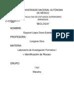 Rocas Informe