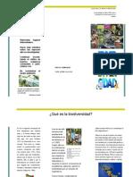 7biodiversidad-130314232329-phpapp02