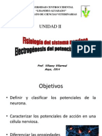 Clase 3 Sistema Nervioso Fisiología Animal