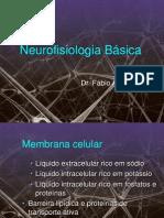 3 Neurofisiologia Basica