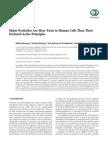 179691 PESTICIDAS.pdf