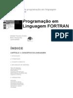 Guia Básico de Programação Em Linguagem Fortran 77 e 90