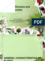 05 plant structure and function