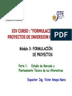 Modulo 3 Formulacion de Proyectos Parte 1 Victor Amaya