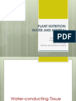 plant nutrition water and mineral uptake