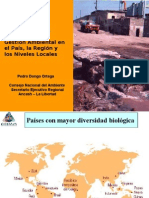 Gestión Ambiental nacional, regional y local