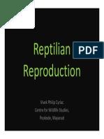 Reptile Reproduction