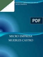 Proyecto Micro Empresa