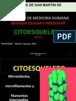CITOESQUELETO.pptx