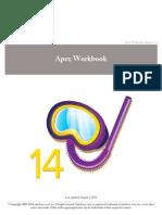 Apex Workbook