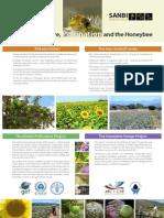 Poster on Honeybees