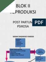 Post Partum Psikosa