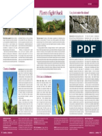Plant Defences FACTSHEET Veld & Flora Sept 2014