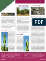 Plant Defences FACTSHEET Veld & Flora Sept 2014