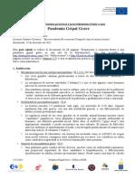 pgg-guia-rapida.pdf