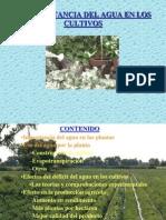 15- Importancia Del Riego en Los Cultivos
