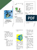 leaflet BBLR.doc