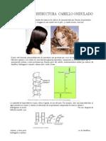 (340451764) Estructura Pelo