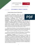 DERECHO AMBIENTAL CONCEPTOS Y PRINCIPIOS.pdf