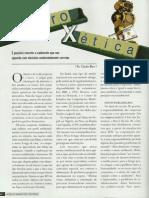 Revista - Artigo Lucro x Ética.pdf